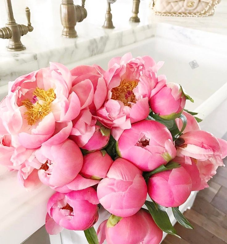 P E O N Y   P O N D E R - Don't get the Peony blues, imported Peonies are still available until end of this month! #peonies #freshflowers #melbourneflorist #cocodesfleurs