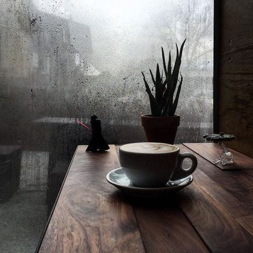 Rainy days spent in a coffee shop
