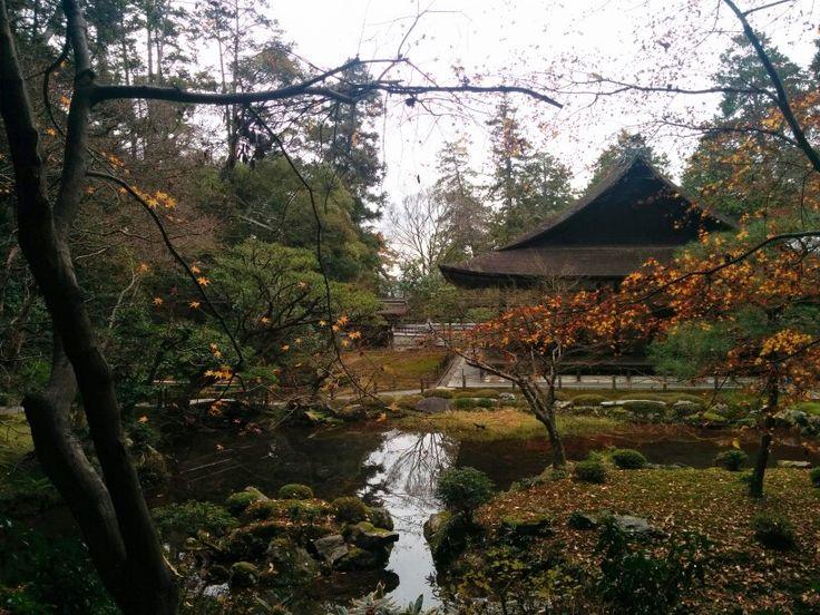Kyoto n