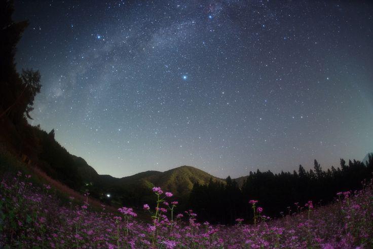 日本一の美しすぎる星空が見れる『阿智村の星空』