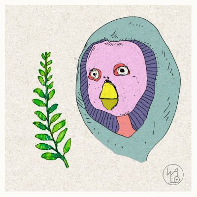 Boceto de ave