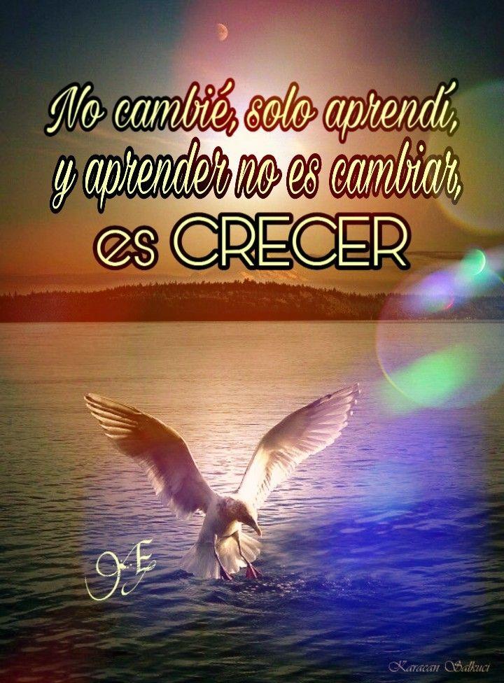 Actitud | Imagen para perfil whatsapp, Imagenes para