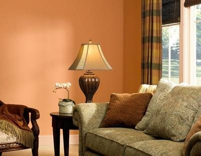 Family room paint depends on your definition of family for Family room definition