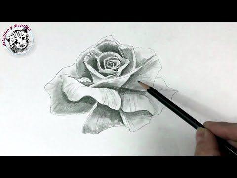 Como Dibujar una Rosa Realista con Un solo Lapiz - YouTube | dibujo ...