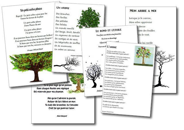 Poésies sur le thème de l'arbre   la maîtresse a des yeux dans le dos