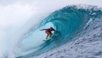 Presto tavole da surf anti-squali