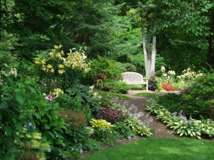 Lynn Nehring's garden. Hosta June borders the walkway to the gardens behind the garage. Orienpet lilies on the left thrive in a bit of sun on the edge of a shady b...