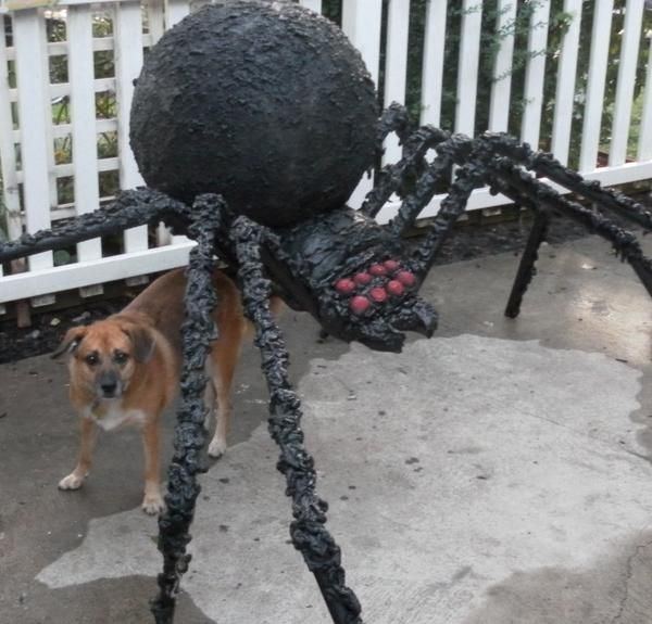 close up of spider halloween - Giant Halloween Spider