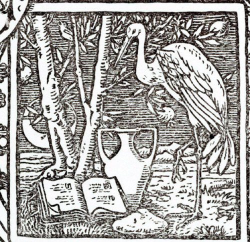 bookplate templates for word - 17 best images about ex libris usa walter crane on