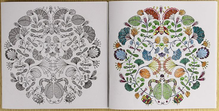 24 Pages Animal Kingdom English Edition Coloring Book For Children Adult Relieve Stress Kill Time Painting Drawing Book 98 % of buyers enjoyed this product!  #slimming #colouring #stress #loseweight #colouringbook #releasemind #reduceweight #mysterygarden #theenchantedforest #creativehobby #meditative #meditativelife #relaxing #relaxation