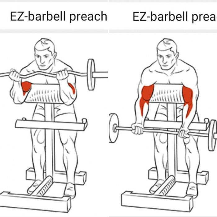 Best Of Biceps Exercises Part 1 - Healthy Fitness Arm Training