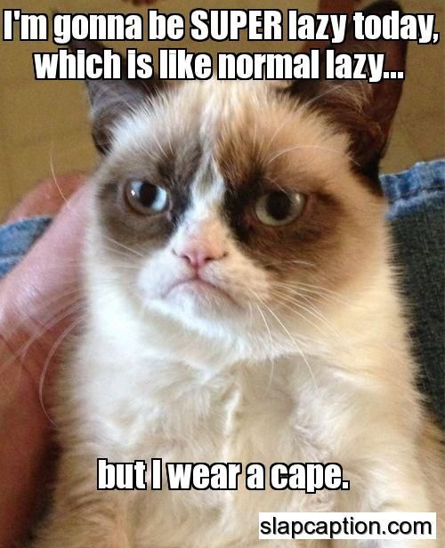 grumpy cat pictures - Tap the link now to see all of our cool cat collections!