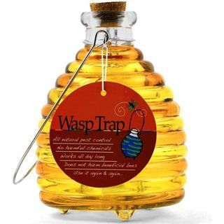 Large Wasp Trap - Yellow/gold