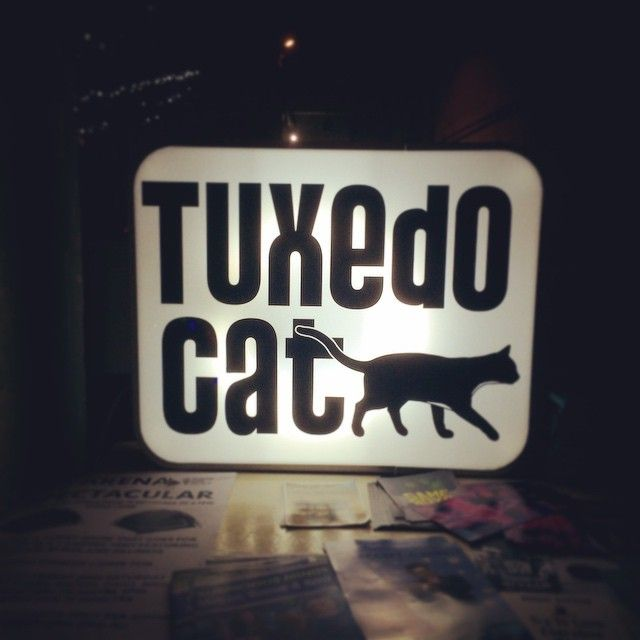"@roh_roh's photo: ""tonight's fringe adventure, brought to by #tuxedocat #snapchatslam #mfringe @melbfringe"""