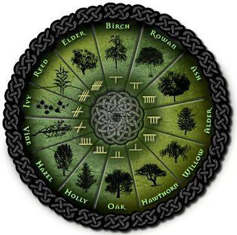 ケルト人ってなにもの? ケルト人の暦コリニーの暦 樹の暦(Beth-Luis-Nion) ケルト人の祭祀と節気節気 祀られているケルト神話の神様達 祭祀と節気 ケルト人ってなにもの? 中央アジアの草...