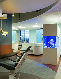 17 best images about medical office design on pinterest for Blue fish pediatrics
