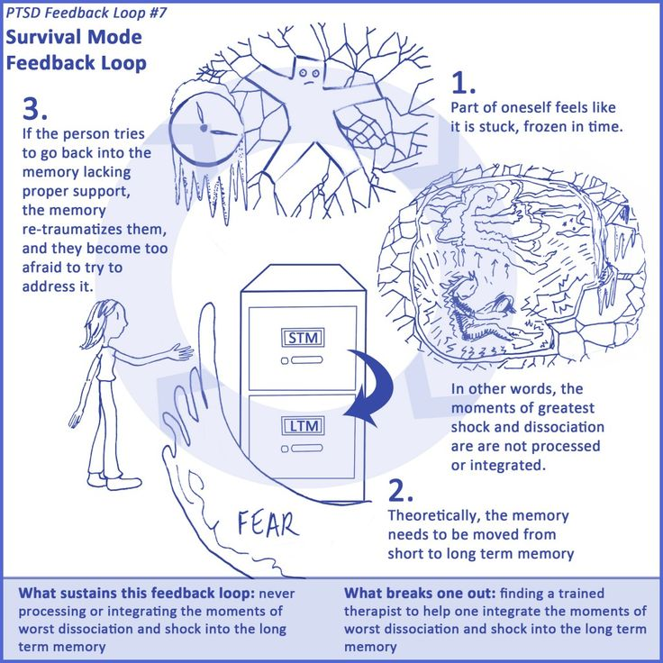 7 PTSD Feedback Loops » Healing from Trauma - LOOP #7 (end)