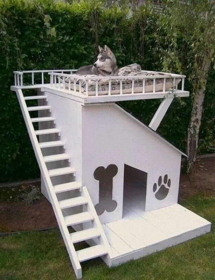 Unique-Dog-Furniture-Design ~ http://www.lookmyhomes.com/smart-in-choosing-dog-furniture/