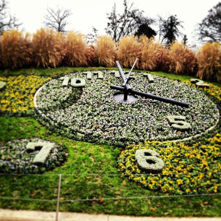 Jardin Anglais - Here is the famous floral design clock which is changed 4 times a year to fit the season, the park around it has a beautiful view of the lake #Geneva