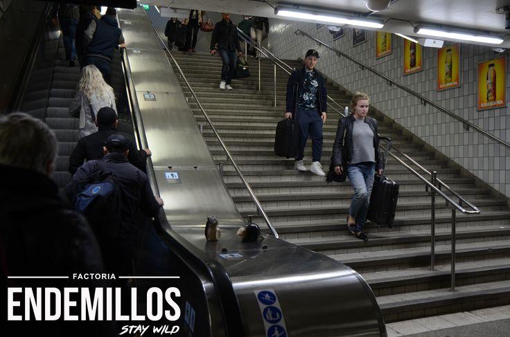 Estacion Central de Estocolmo visitada por los Endemillos