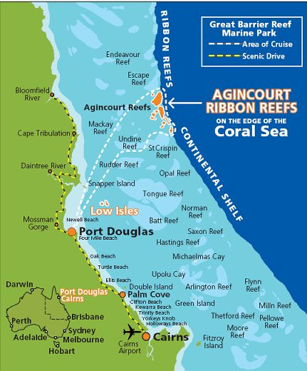 In case we want to go out to the reef for a second day - Agincourt Ribbon Reefs Dive Snorkel