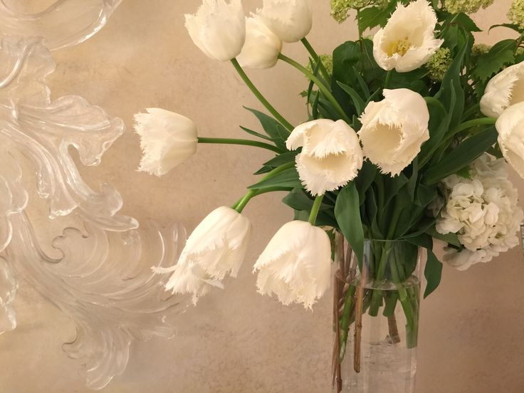 The Raum - Welcome Flower  #welcome #flower #party #tulip #brise