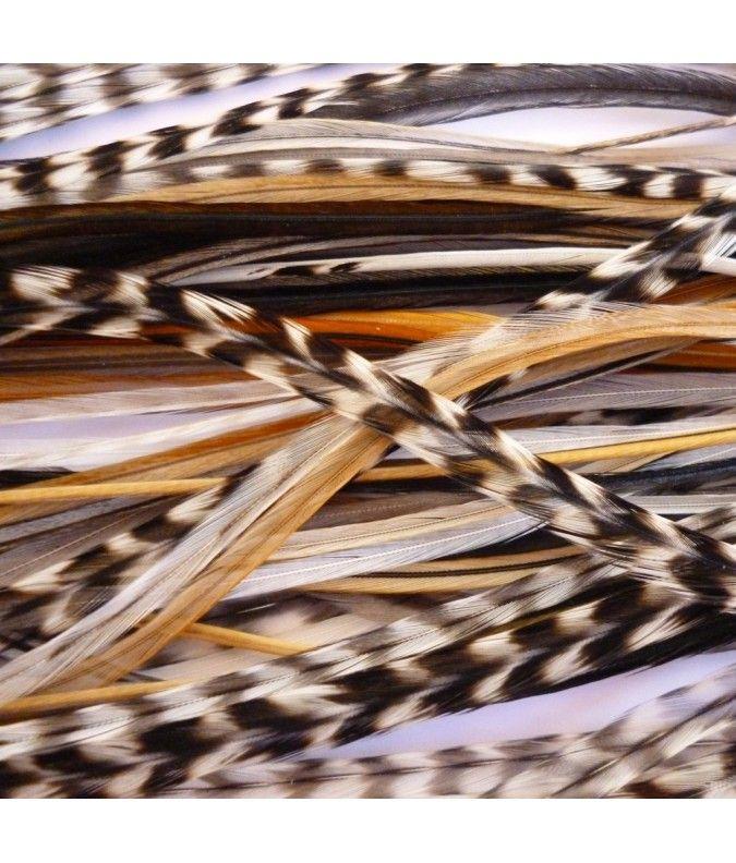 Lot 20 plumes L (20-24cm) uniquement nature - Kazaee