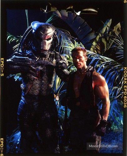 422db87f9781ef Predator