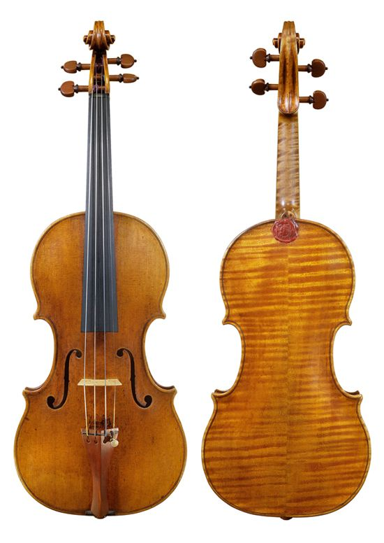1000 images about violins 39 the brothers 39 amati on - Volpino piccolo ...