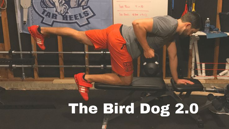 The bird dog, traditionally programmed for people who either are doing some low back rehab or trying to work on some spinal stability, can be one tough exercise. When programmed appropriately, the bird dog can become one awesome strength & performance exercises!