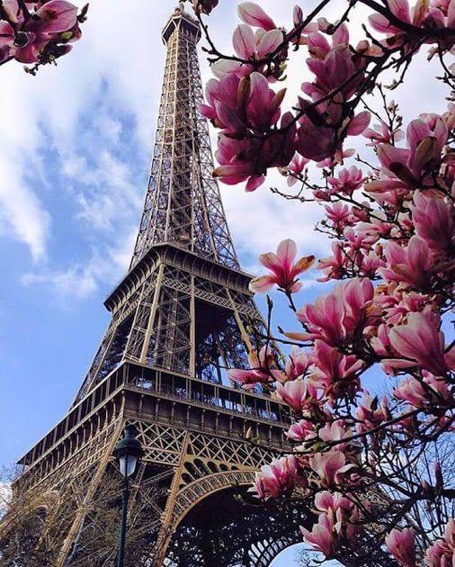 Bonita imagen de la torre effiel ( París - Francia )