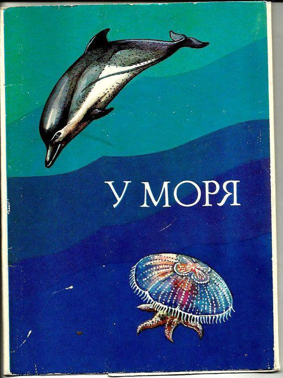 Vintage Russian USSR Postcards - set of 15  Life sea. Starfish, fish, sea hedgehog, crab, mollusks, mussel