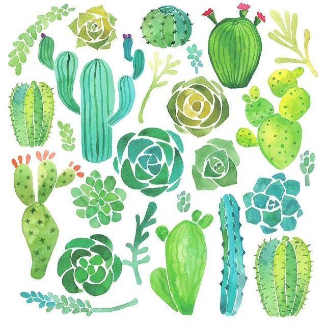 nadezhdakrupina:  Watercolor cacti and succulents