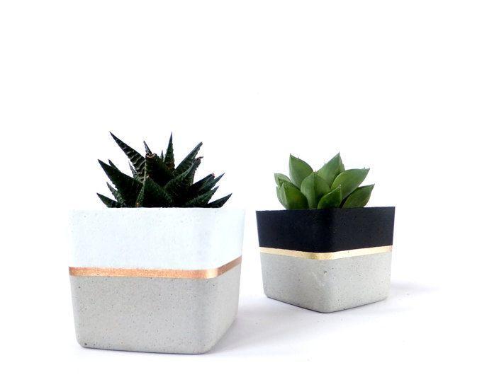Konkrete Bleistift Inhaber Pflanzer Für Sukkulente Grau Weiß Schwarz