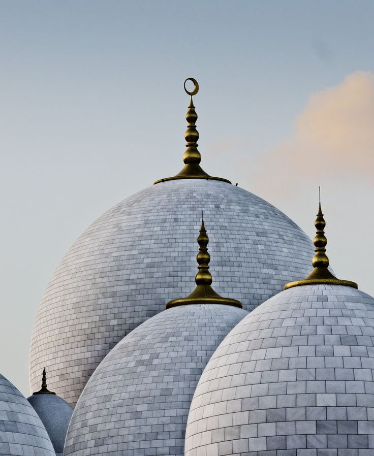 Zayed Grand Mosque, Abu Dhabi | UAE (by Furious111) #mosque #eastern #architecture #art