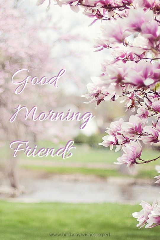 Good Morning Quotes To Friend : Best ideas about good morning friends on