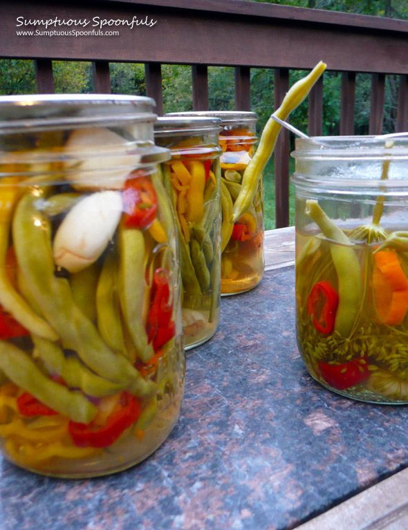 I'll be the first to admit: I'm not an expert at pickles. My parents, on the other hand, have many many years of experience making pickles and when I got the sudden urge to pickle Mom&#…