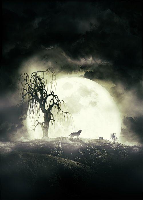 Les Fragments de la Nuit avec Photoshop