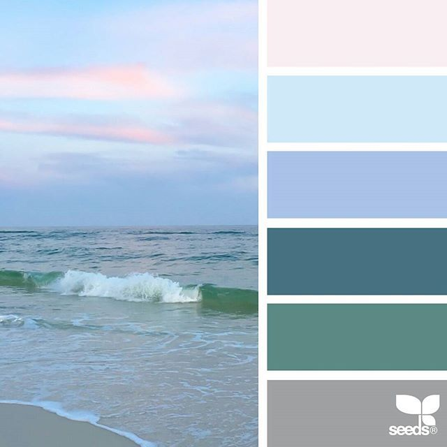 today's inspiration image for { color shore } is by @lashesandlenses ... thank you, Michelle, for another breathtaking #SeedsColor image share!