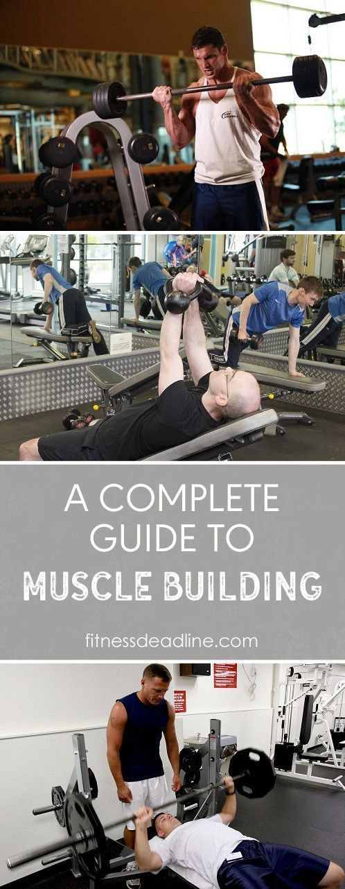 Check out our Complete Guide to Muscle Building. Muscle building workouts & the best muscle building foods to include in your muscle building meal plan.