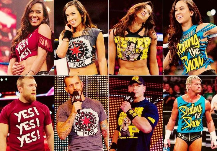 AJ Lee personaly the cm punk one looks the best