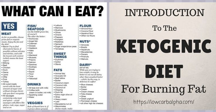 Introduction To The Ketogenic Diet For Burning Fat With Ketone For Fuel