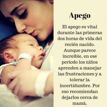 ¿Cómo son los primeros minutos de vida de un recién nacido? | Blog de BabyCenter