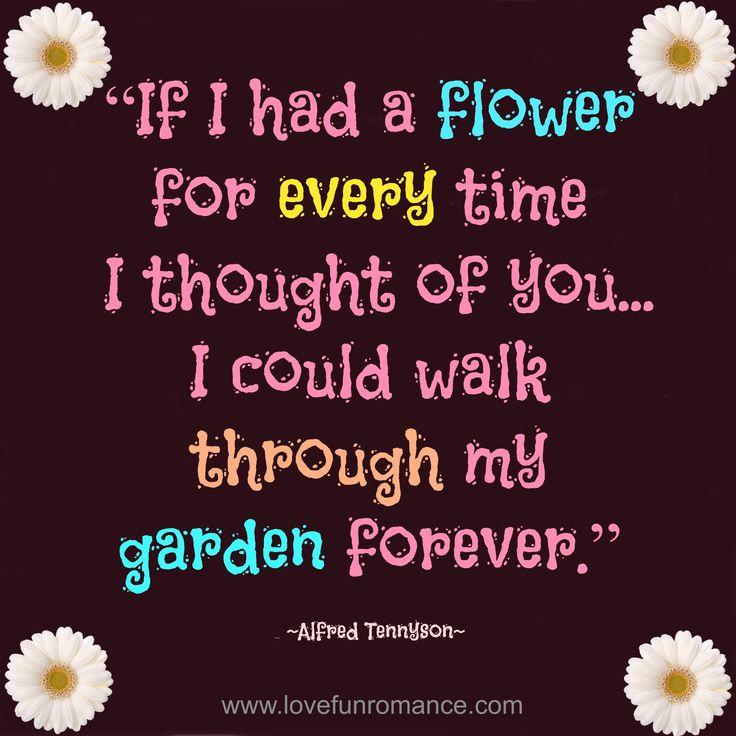 """""""If I had a flower for every time I thought of you...I ..."""