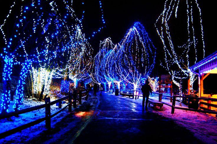 Holiday Christmas  Christmas Lights HDR Wallpaper