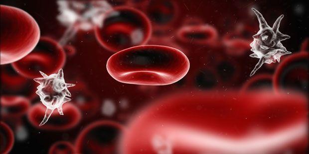 Blutvergiftung (Sepsis) - Unbehandelt verläuft eine Blutvergiftung immer tödlich. Hier lesen Sie, was eine Blutvergiftung ist, wie man sie rechtzeitig erkennt und wie sie behandelt wird.