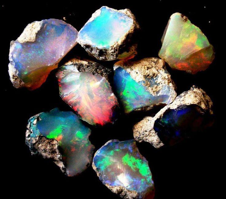 Ethiopian wello rough opal for sale