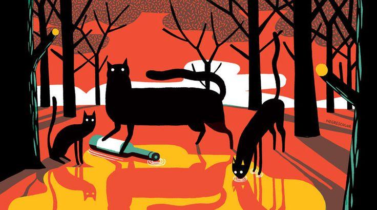 JoanNegrescolor - Illustration - The Mushroom Company