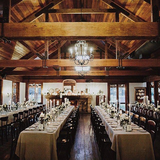 BROOKE TESTONI's wedding reception