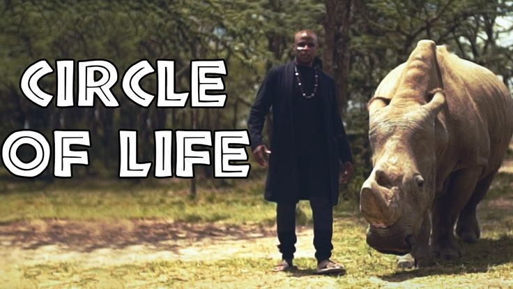 """The Lion King - """"Circle of Life"""" 
